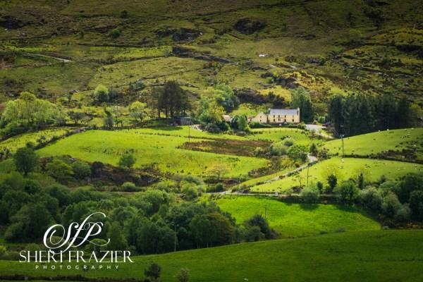 Irish Hills & Home | Sheri Frazier Photography