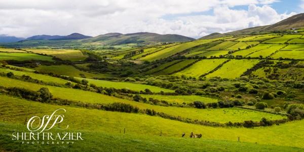 Light Landing on Irish Fields | Sheri Frazier Photography