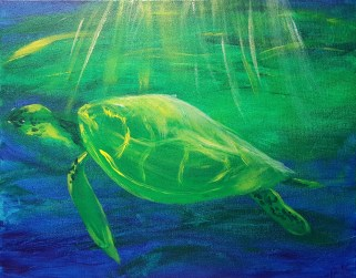 Sheri's finished turtle in daylight