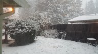 The snow was still falling on our home fast and furiously