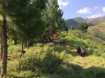 Surveying in Rulangala