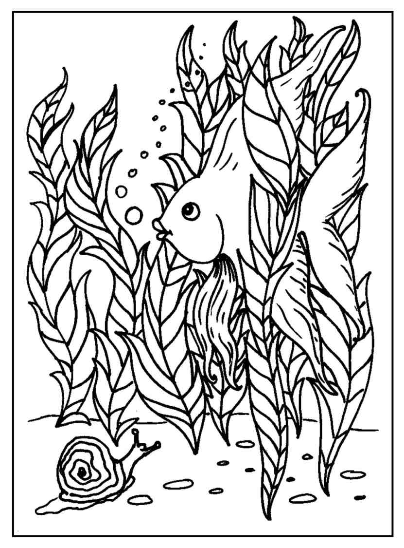 Funny Fish Coloring Pages