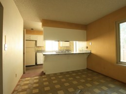 043-568030_Dining_Area_to_Kitchen_55211288