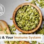 zinku & sistemi imunitar