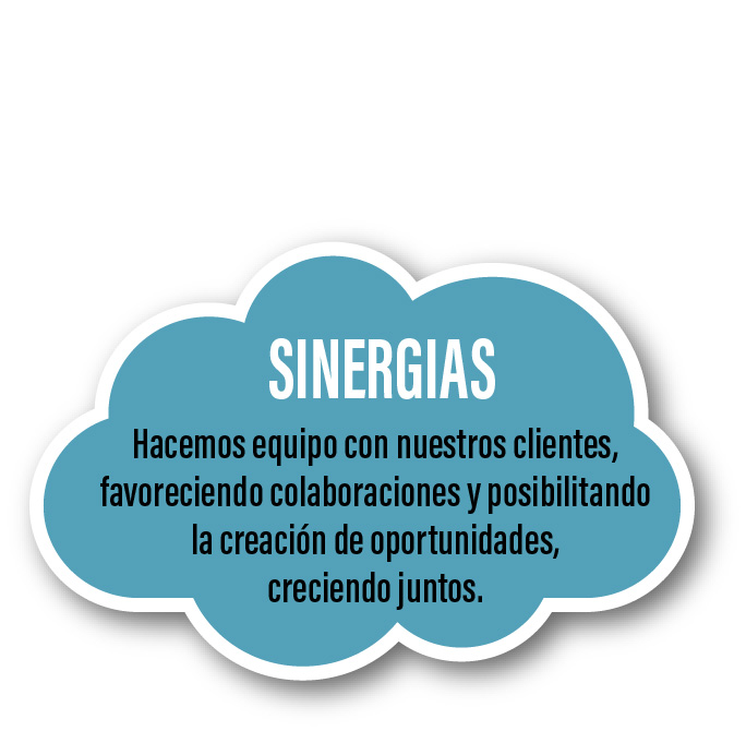 Sherpa sinergias