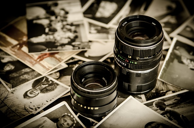 Photo by jarmoluk(Pixabay)