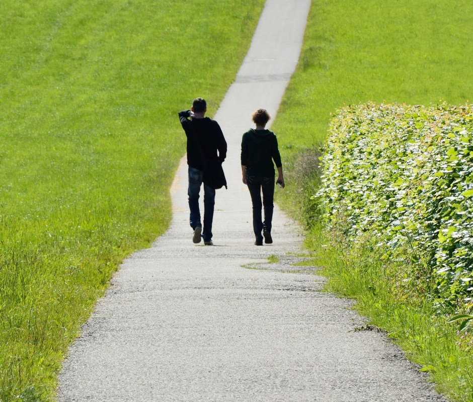 couple, walking, nature