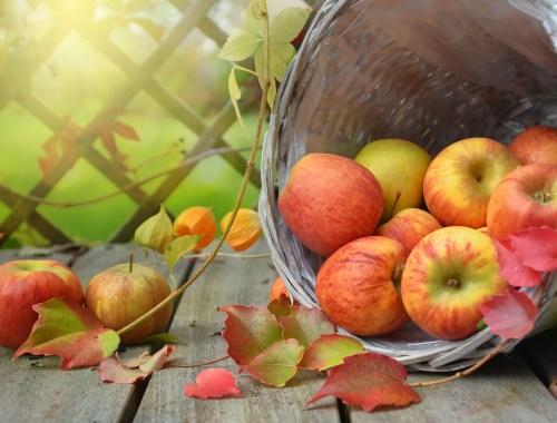 changing seasons, apples, leaves, lanterns, basket