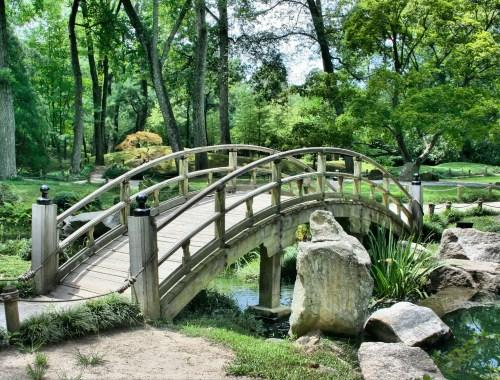 bridge, Japanese garden, serene, serenity