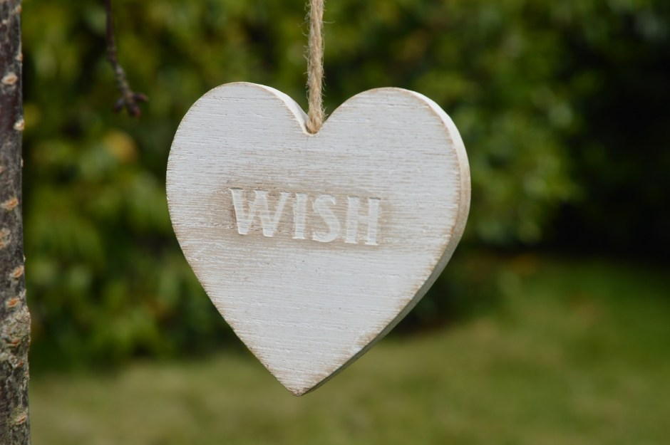 wish, dream, future plans