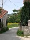A walk around the village (62)