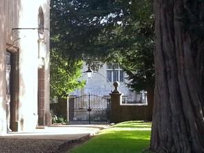 Sherborne Walk Oct 2014 (26)