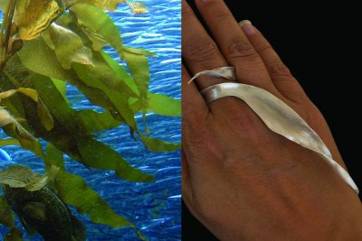 Kelp forest in Monterey California and the Kelp Frond ring it inspired
