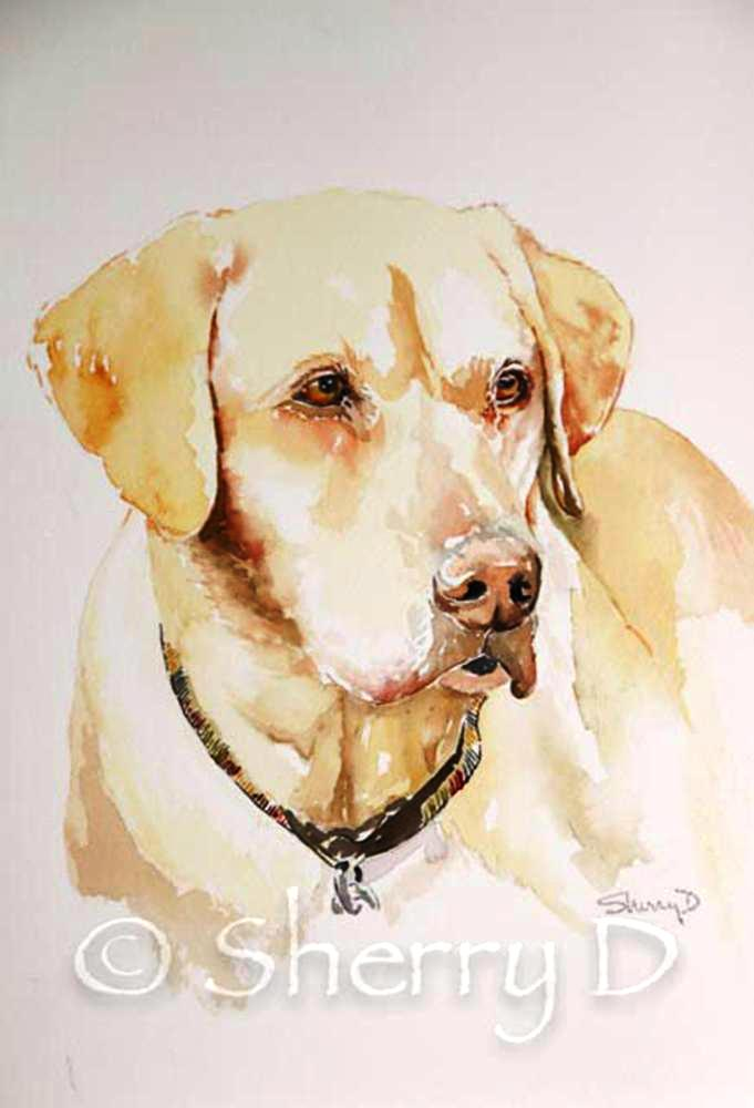 Fall Puppy Wallpaper Watercolor Painting Research Shannon S Art