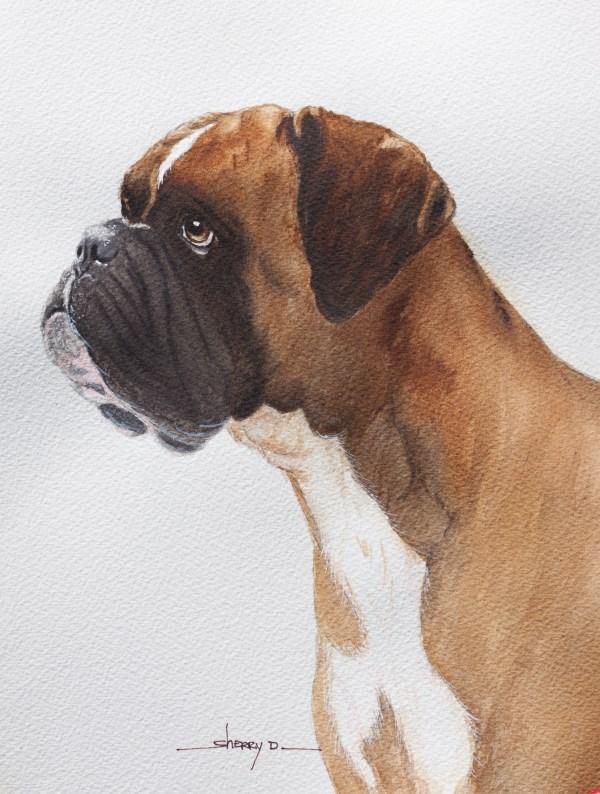 Watercolor Paintings Pet Portraits Sherry