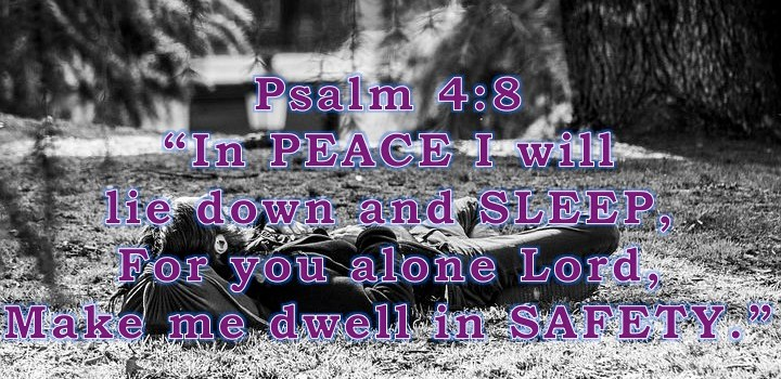 Week # 11 Wisdom Builder Psalm 4:8