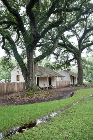 New Orleans Day Trip to Oak Alley Plantation Louisiana spanish oak trees with live moss