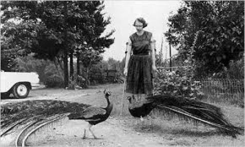 flannery with peacock