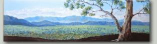 Landscape done