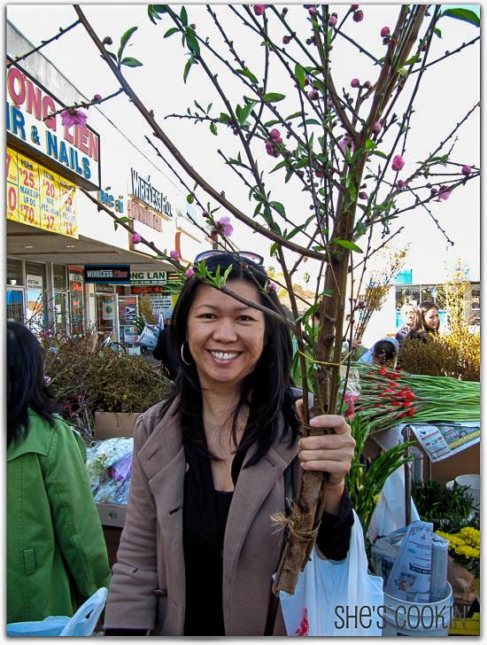 Plum blossoms for Tet Festival