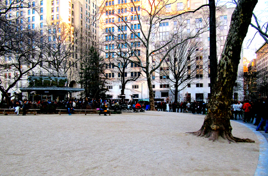 Shake Shack at Madison Square Park