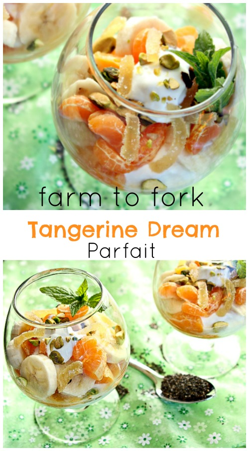 Tangerine Parfait with Chia Seeds
