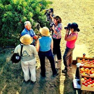 Masumoto Farms, Melissa's Produce grower tour