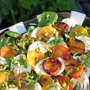 Grilled Pluots with Mozzarella and Pear Vinaigrette
