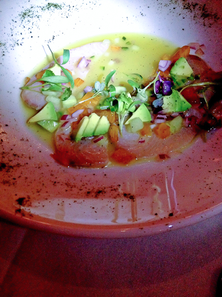yellowtail aguachile, yellowtail sashimi, yellowtail ceviche