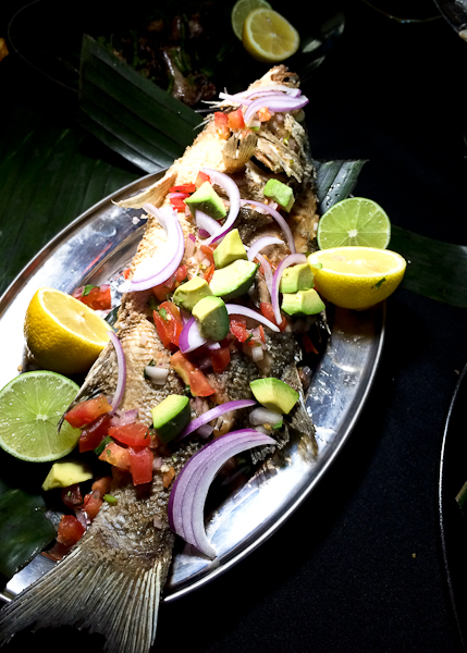 Striped Bass with Avocado, Onions, Salsa, Cilantro and Lime