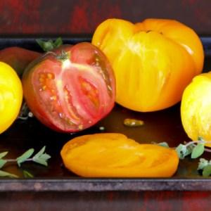 Ottolenghi's Tomato & Pomegranate Salad, ShesCookin.com