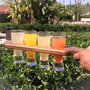 Mimosa Flight - peach / passion fruit & blood orange / mango / strawberry-lemon - EATS Kitchen & Bar   ShesCookin.com