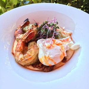 Shrimp & Grits Chorizo Sofrito and chili oil   ShesCookin.com