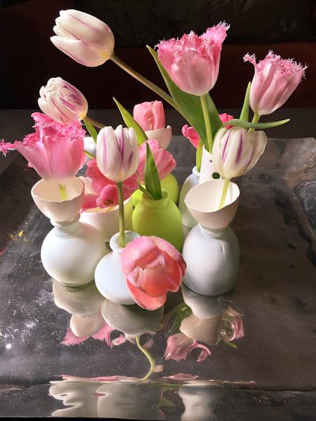 Tulips in Amsterdam | ShesCookin.com