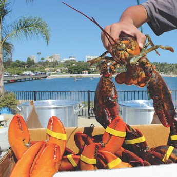 Don't Miss Lobsterfest at the Newport Dunes