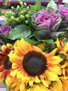 Flowers, Carlsbad Flower Fields | ShesCookin.com
