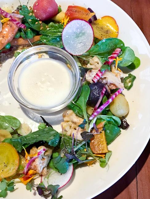 Burrata, Golden Beet Salad | Lido Bottle Works | ShesCookin.com
