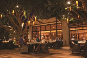Beautifully lit patio dining at Oak Grill in Fashion Island Hotel