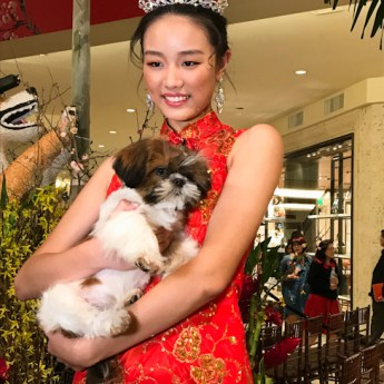 South Coast Plaza Celebrates the Year of the Dog #CNY2018