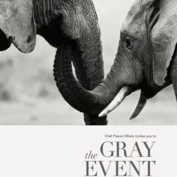 The Gray Event Charity Fundraiser #SaveTheElephants