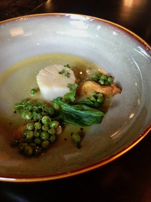seared scallops, peas, burr blanc