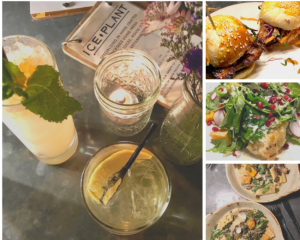 Craft cocktails and savory bites at Ice Plant Bar, St. Augustine
