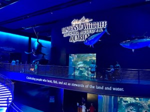 Wonders of Entry at Wildlife Museum and Aquarium in Springfield, Missouri