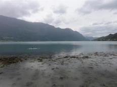 Swimming Lustrafjorden