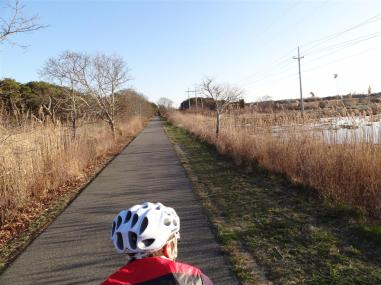 Shining Sea bike way, Cape Cod