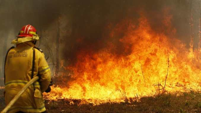"""The NSW Premier has declared a seven-day state of emergency, predicting """"the most dangerous bushfire week this nation has ever seen"""""""