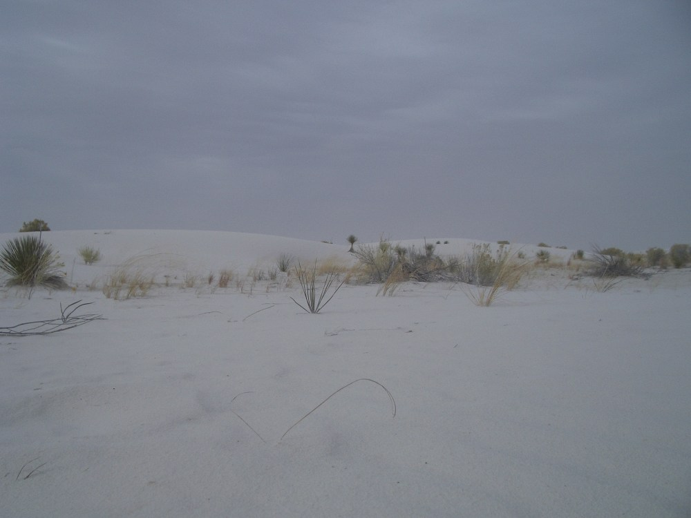 Sandboarding White Sands National Monument and Missile Range (4/6)