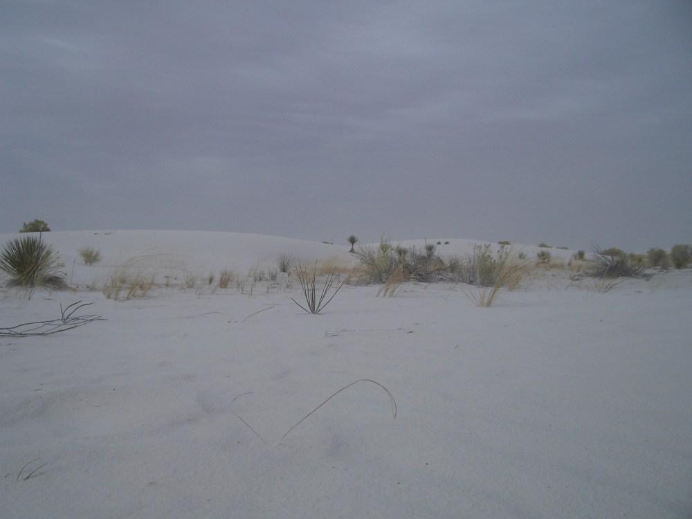Sandboarding White Sands National Monument and Missile Range (4/6)