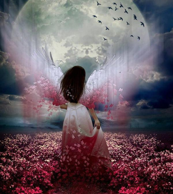 Beautiful Moon Angel