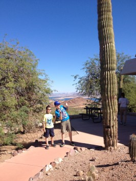 Lake Mead Conservation area gardens